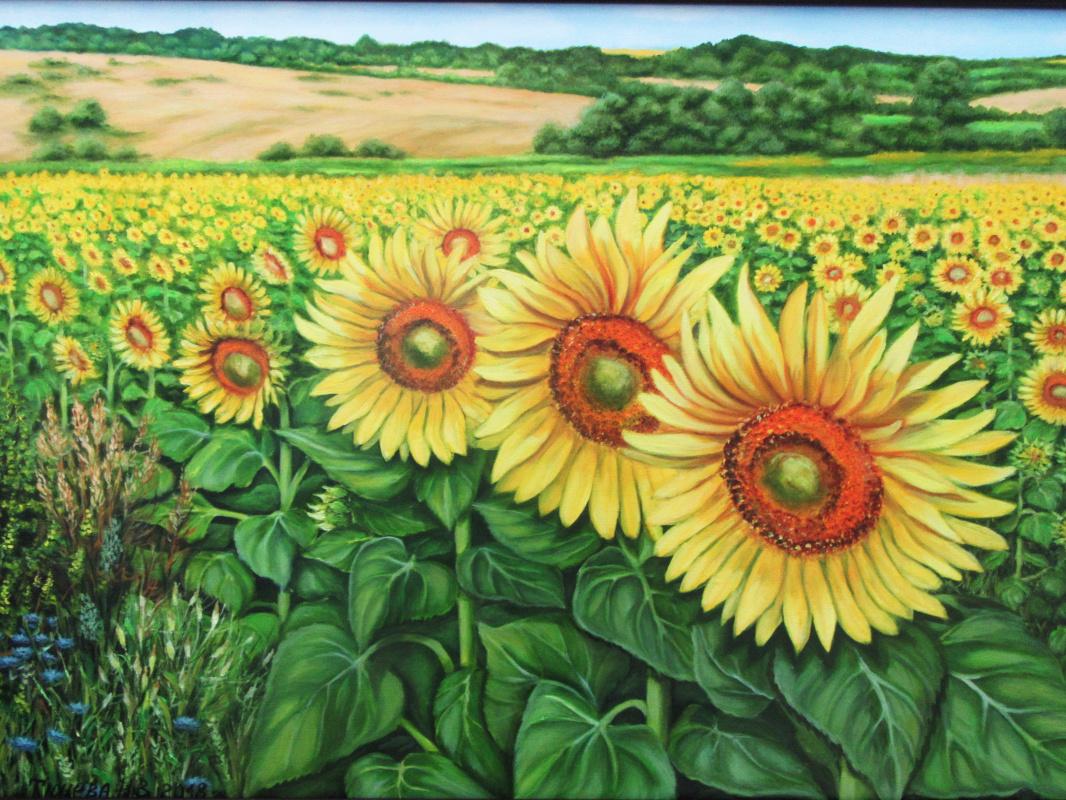 Natalia Viktorovna Tyuneva. Sunflower field