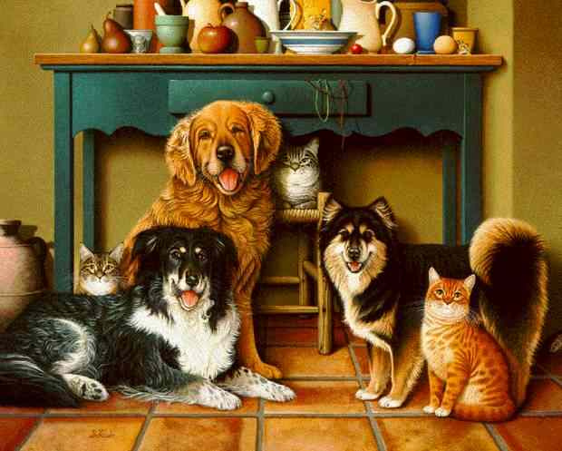 Braldt Bralds. Dogs and cats