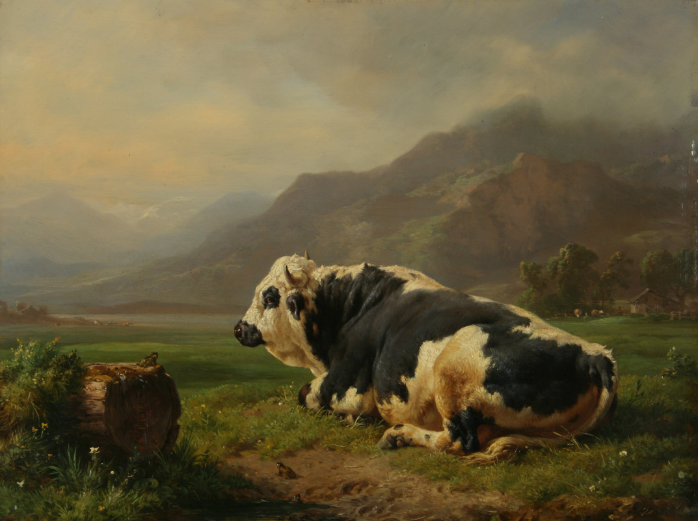 Жак Раймон Браскасса. Отдыхающий бык