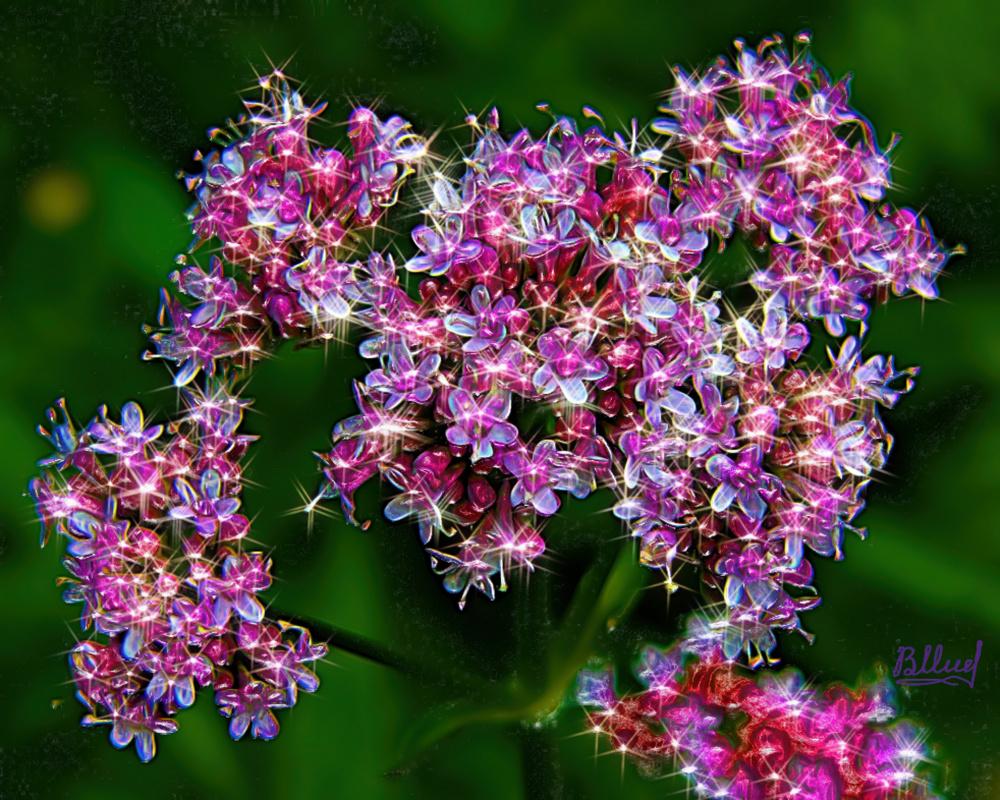 Vasiliy Mishchenko. Flowers 022
