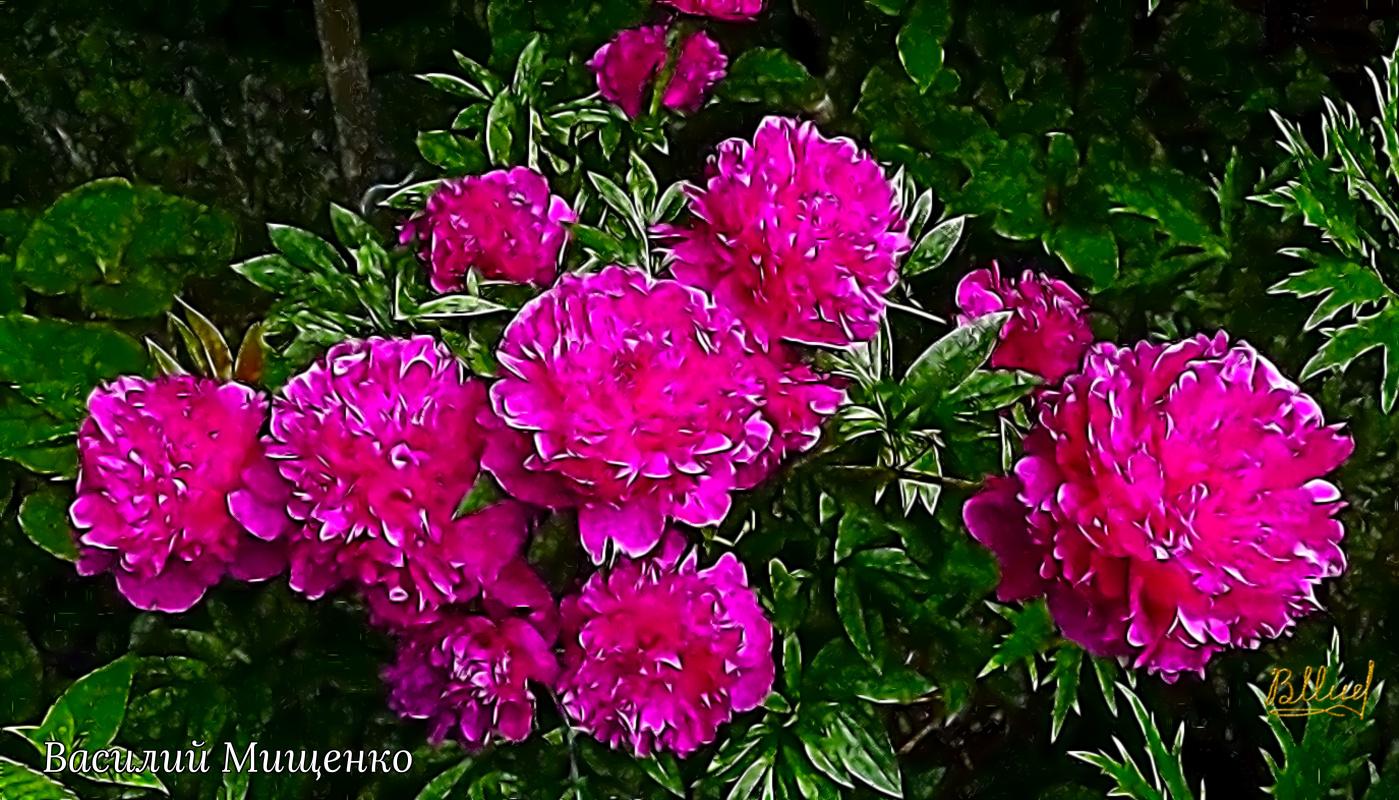 Vasiliy Mishchenko. Flowers 049