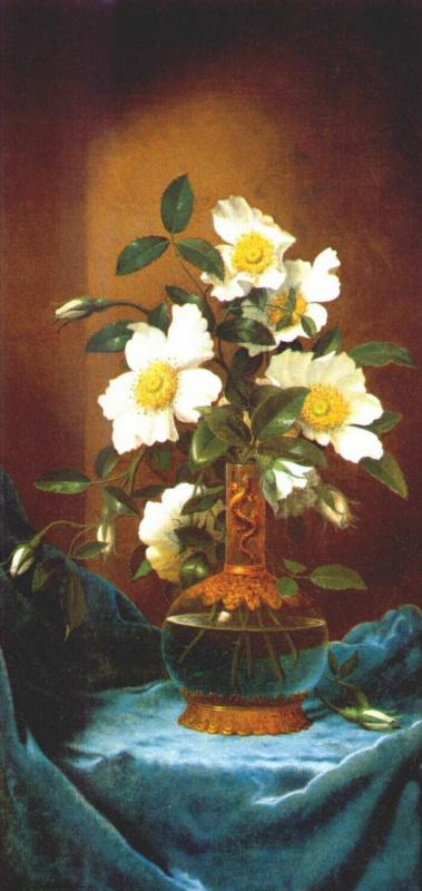 Мартин Джонсон Хед. Белые розы чероки в вазе с саламандрой