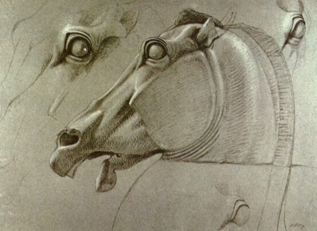 Benjamin Robert Haydon. The head of a horse of Selene