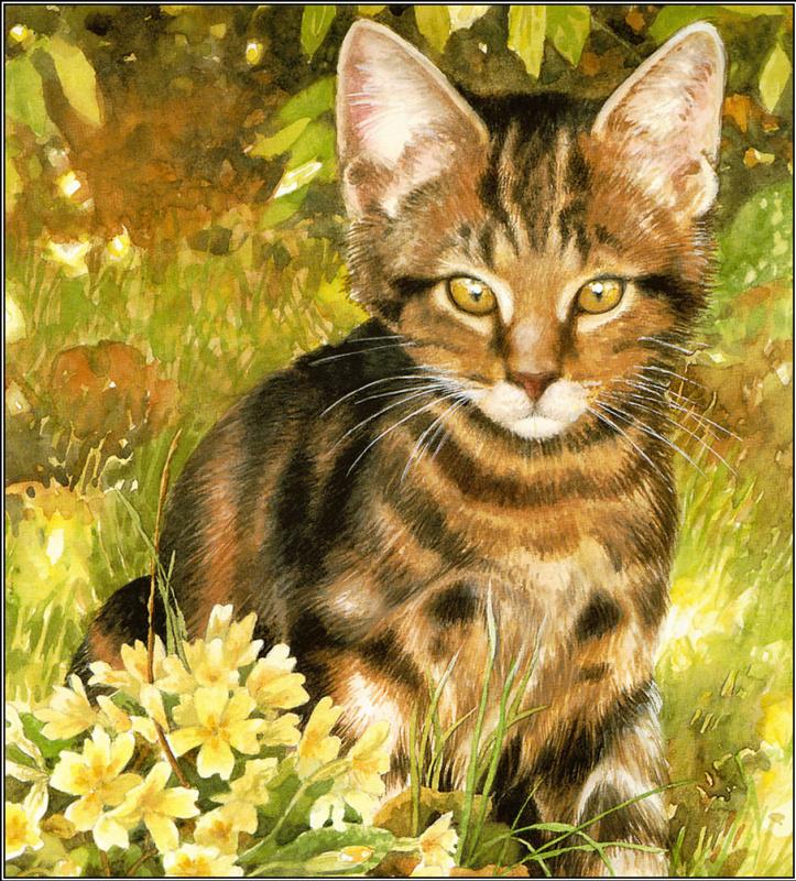 Крисси Снеллинг. Котенок в траве