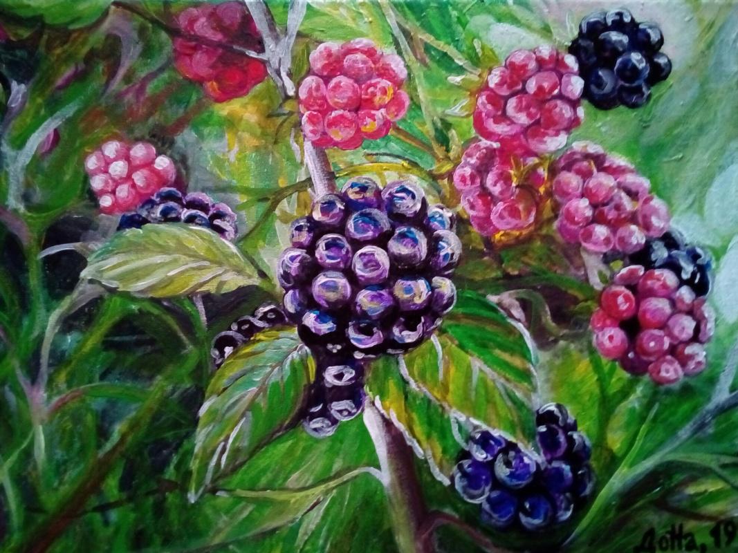 Natalya Leisure. Blackberry branch.