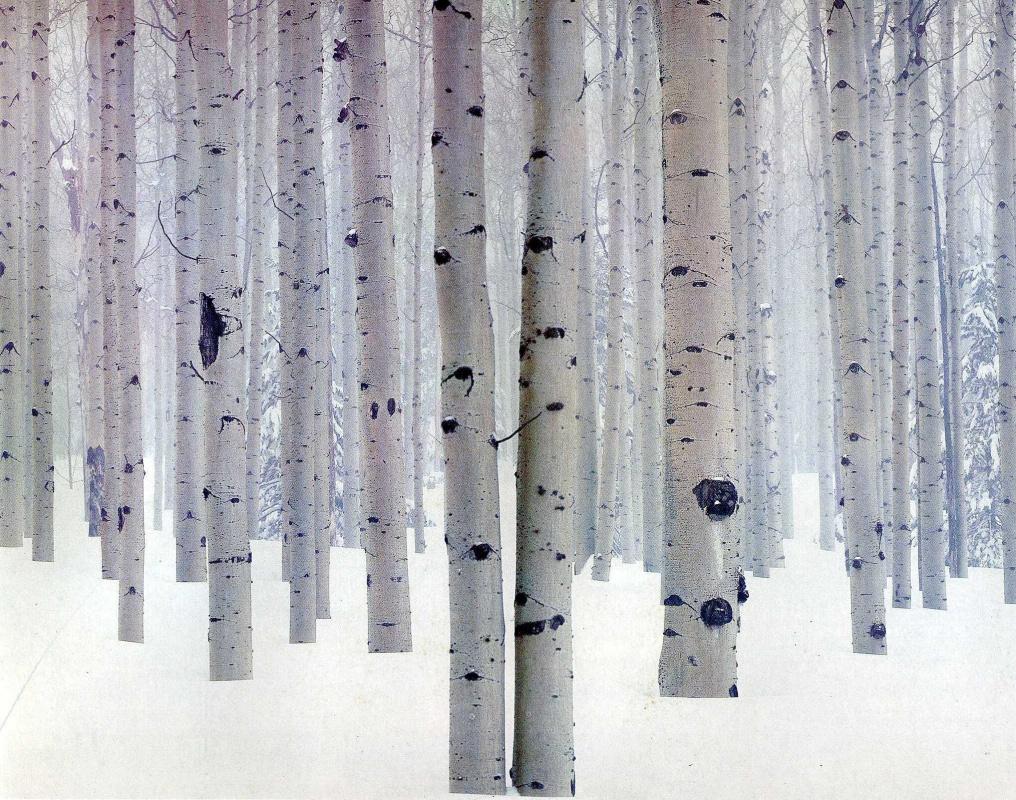 David Munich. Birch in the snow