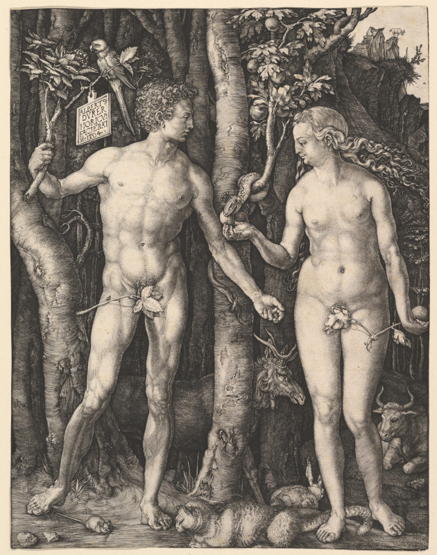Albrecht Durer. Adam and eve