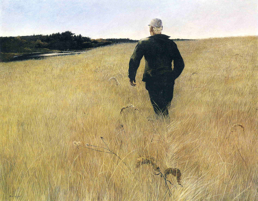 Andrew Wyeth. Turkey pond