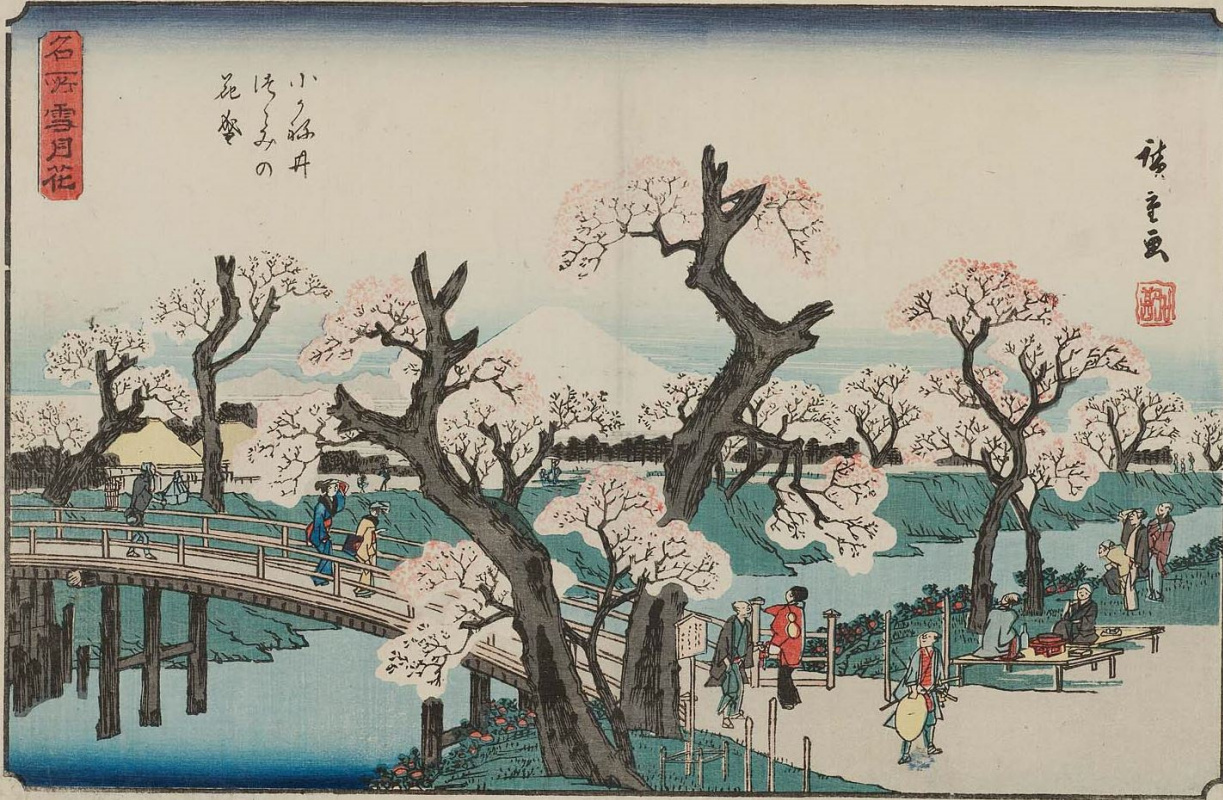 Утагава Хиросигэ. Цветущие вишневые деревья на набережной в Коганай