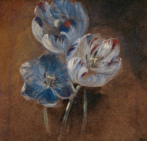 John Constable. Three tulips. Sketch