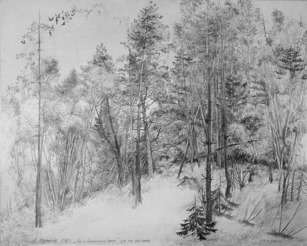 Alexander Shevelyov. Forest in Pushkin mountains.Boom. The tonir.Graph. CT.59 x 74 cm 1988