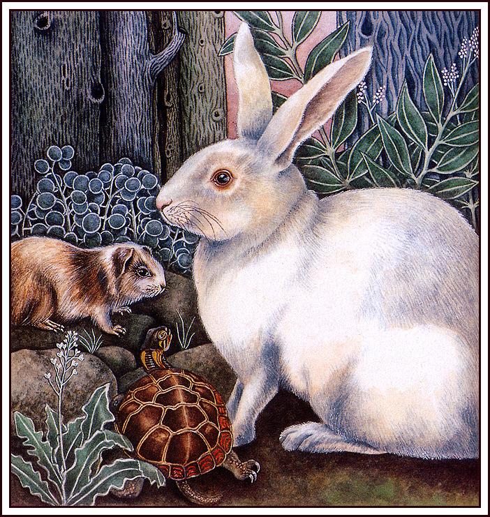 Кэрол Иноуэ. Белый кролик