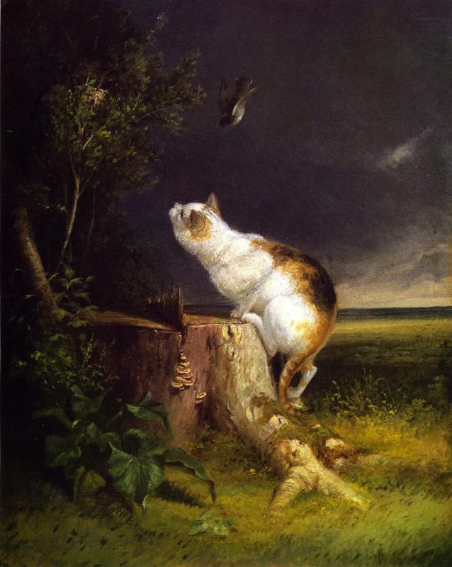 Уильям Холбрук Берд. Наблюдатель за птицами