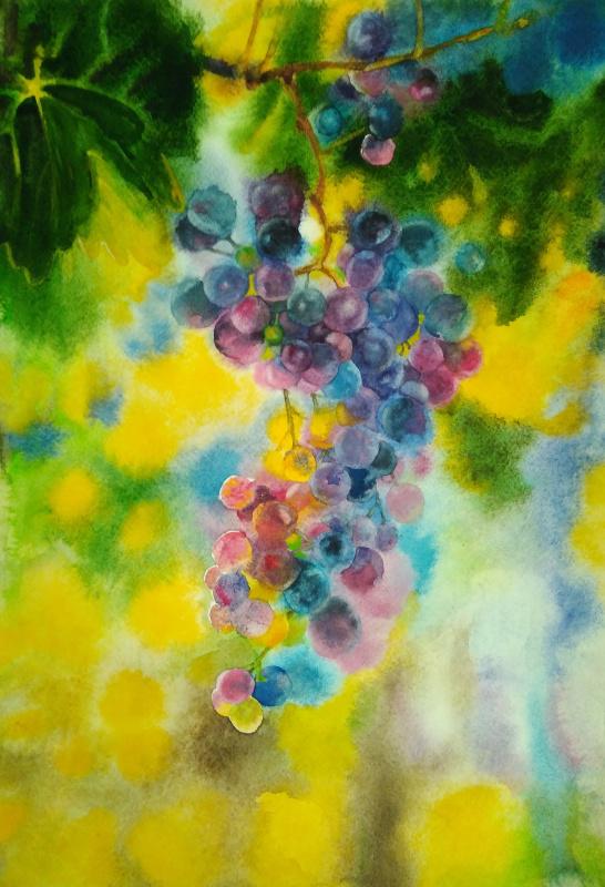 Polina Komkova. Grapes