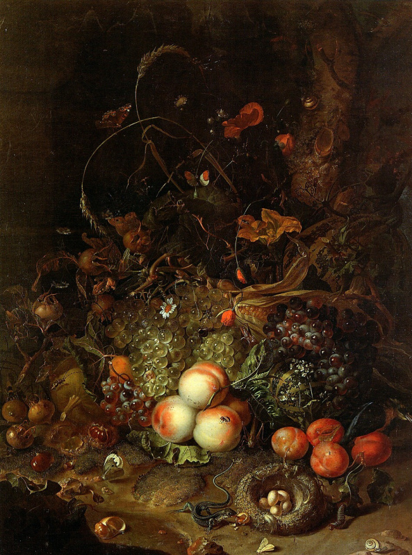 Rachelle Ruysch. Fruit, flowers, reptiles and insects on the edge of the forest
