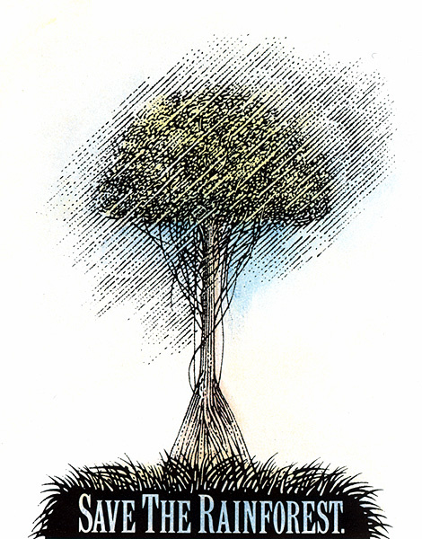 Майкл Булл. Спасите тропические леса