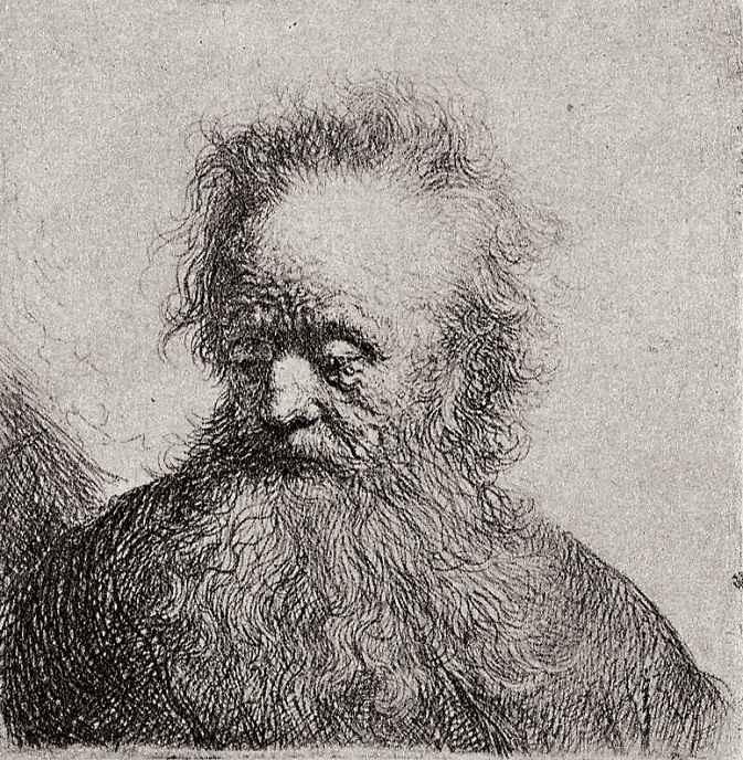 Рембрандт Ван Рейн. Голова старика с длинной бородой, глядящего в сторону