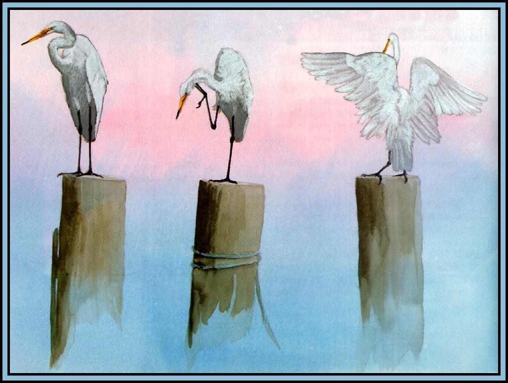 Roger Bansemer. Great white egret