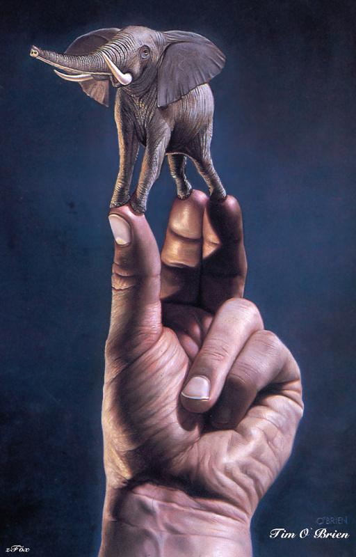 Тим О Брайен. Слон в руке