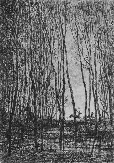 Charles-Francois Daubigny. Deer in the woods