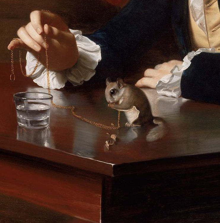 John Singleton Copley. Boy with a squirrel-a flying squirrel (Henry Pelham). Fragment