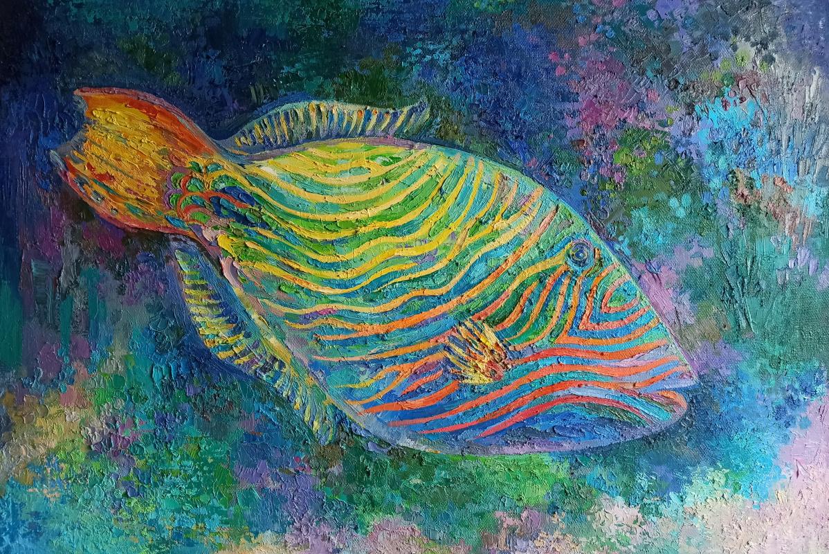 Irina Gubarevich. Orange-finned triggerfish