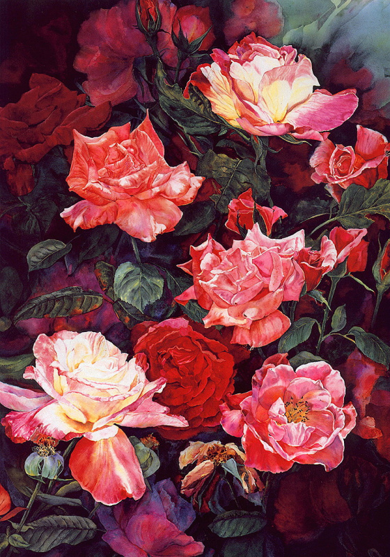 Сьюзан Блек. Цвет роз