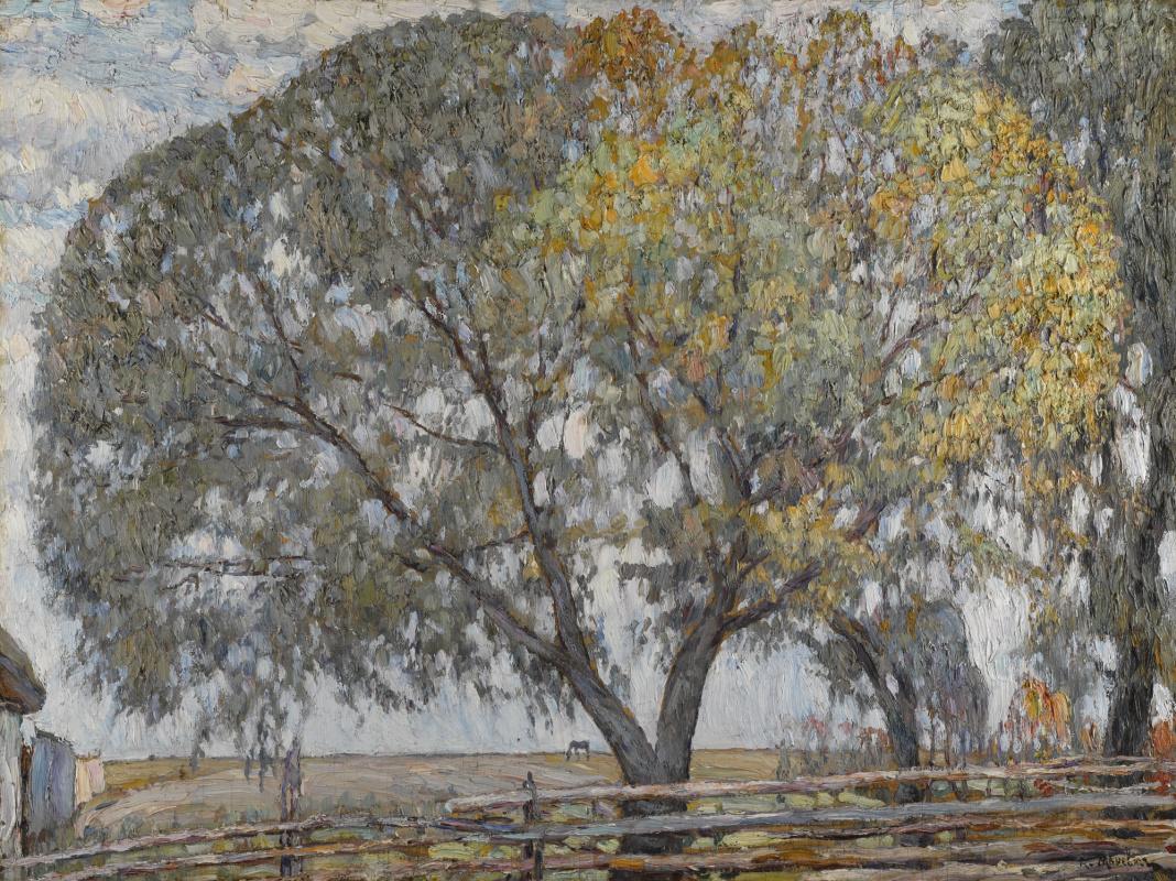 Абрам Аншелевич Маневич. Willow
