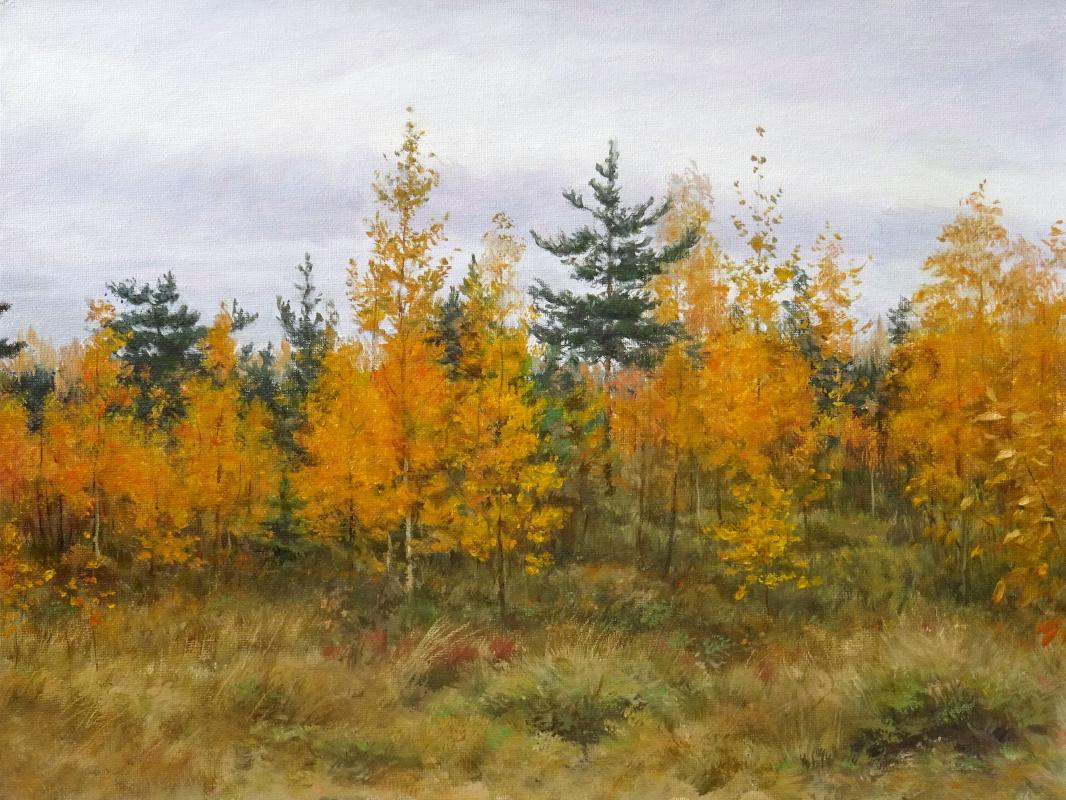 Igor Lemekhov. Autumn edge