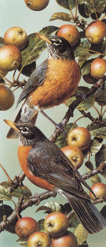 Карл Брендерс. Птицы на яблоне