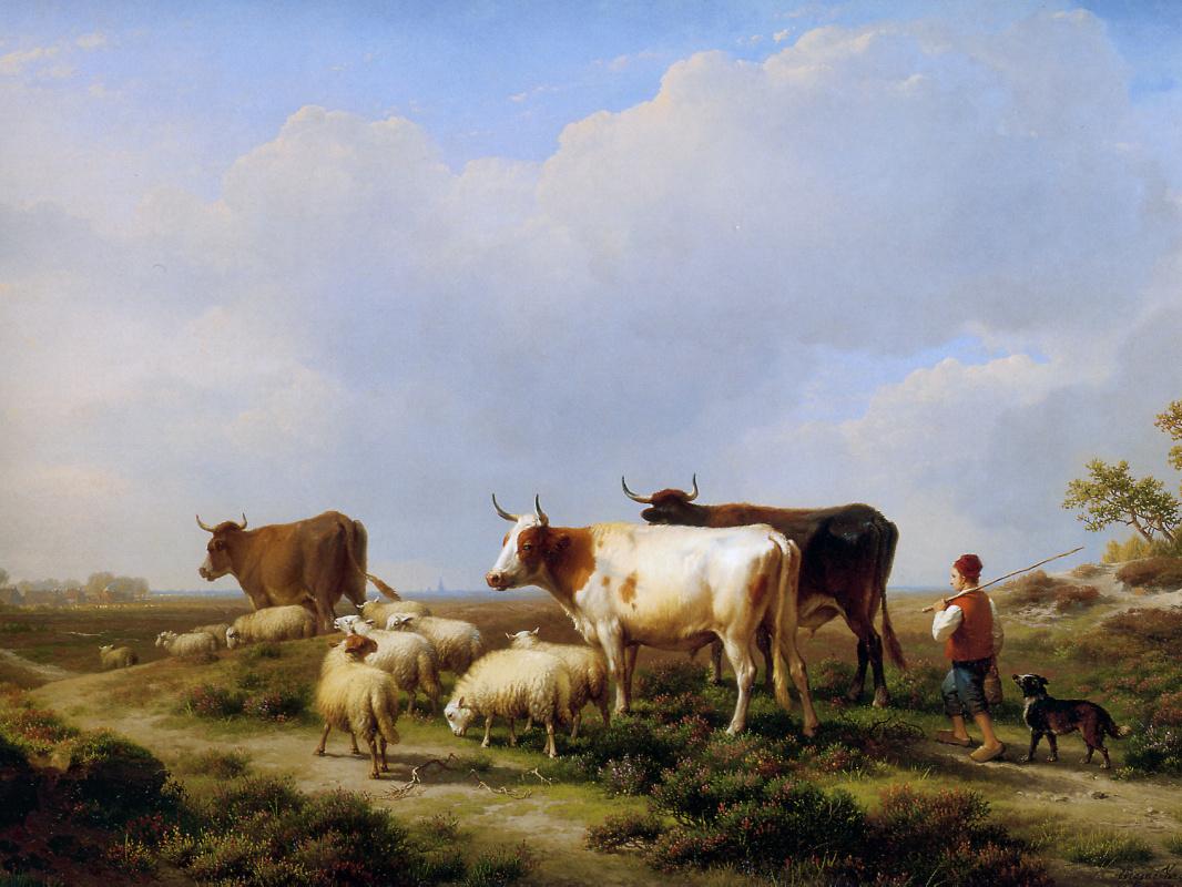 Evgenij Iosif Verbukkhoven. Cows