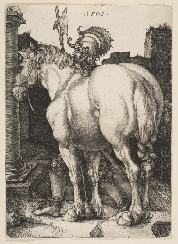 Albrecht Durer. Big horse