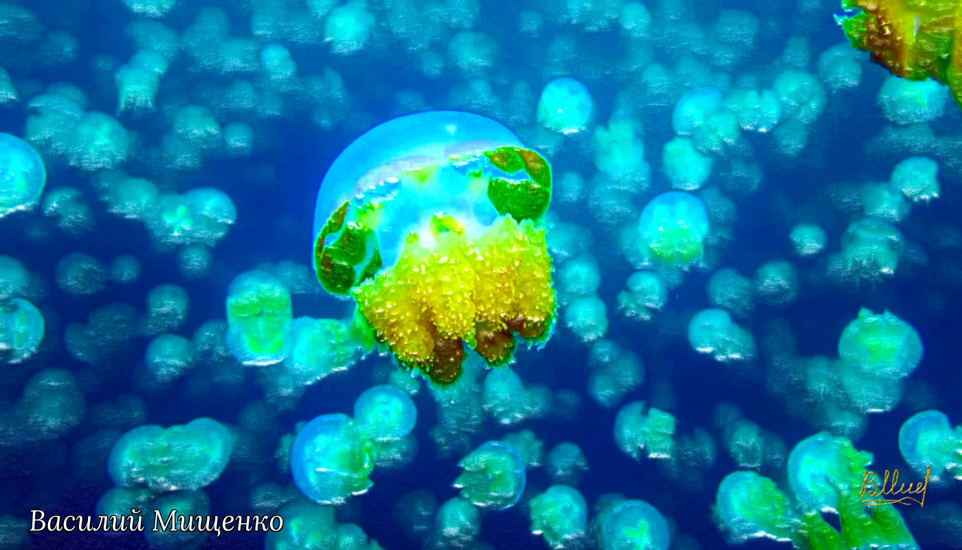 Vasiliy Mishchenko. Underwater world 006