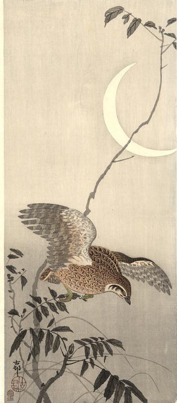 Ohara Koson. Birds