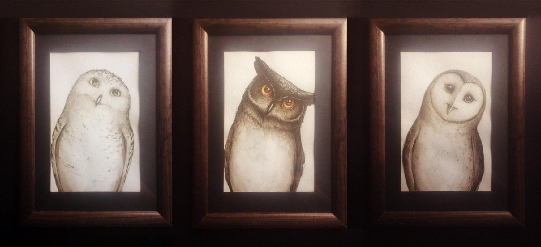 Петр Сергеевич Кучеренко. Owls