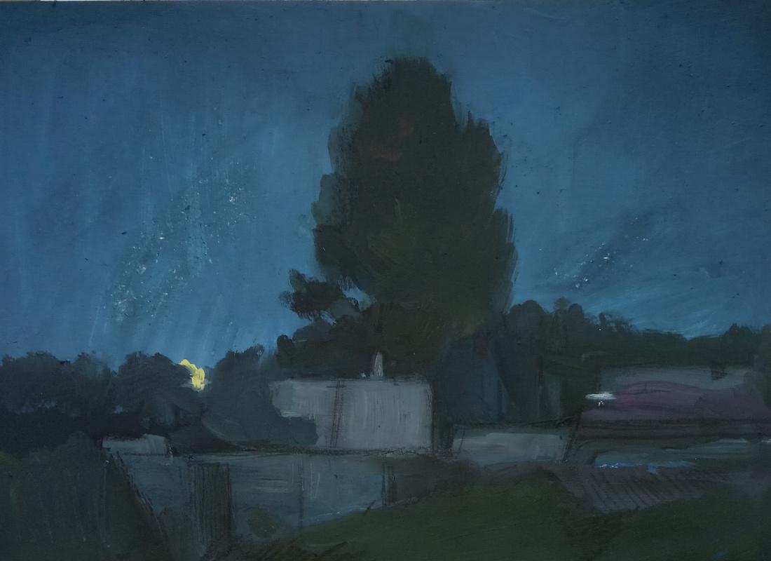 Anna Glazunova. June night