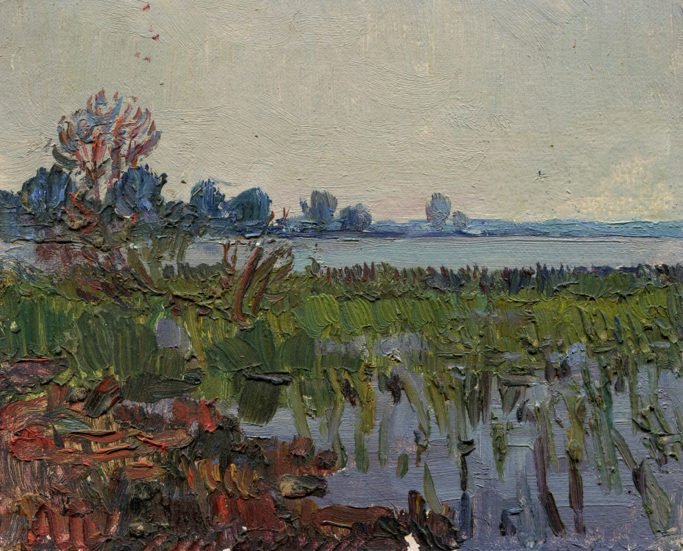 Vasily Fadeevich Demin. Study by the water