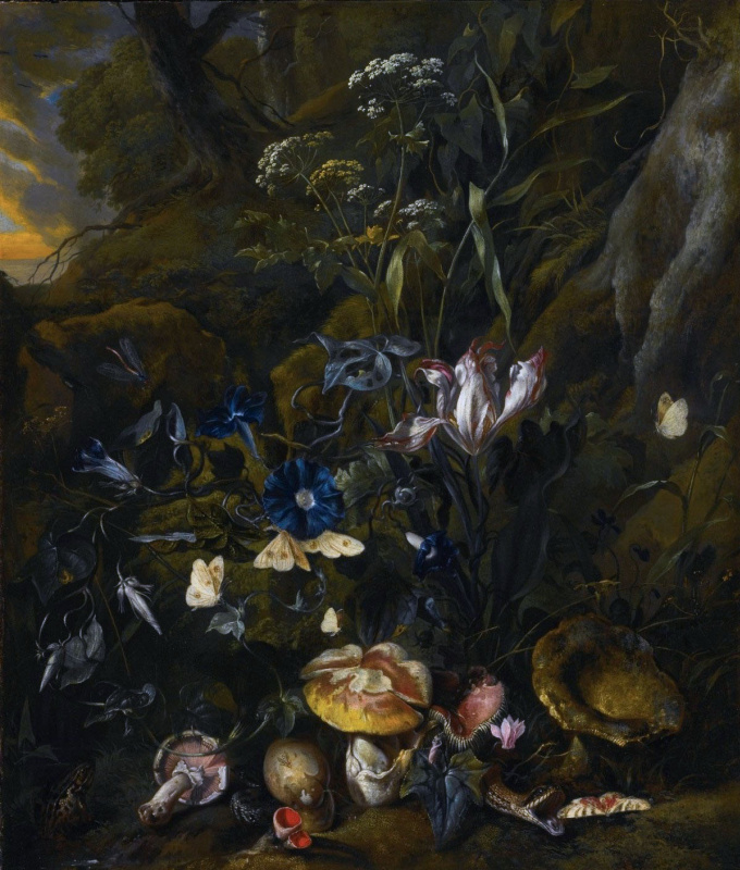 Otto Marceus van Scriec. Forest still life with flowers, mushrooms and butterflies