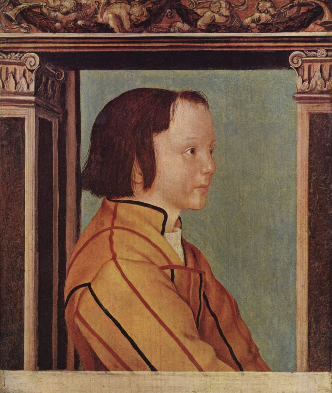 Ambrosius Holbein. Portrait of a dark-haired boy