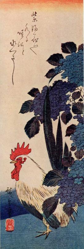 "Utagawa Hiroshige. Cock and hydrangea. Series ""Birds and flowers"""