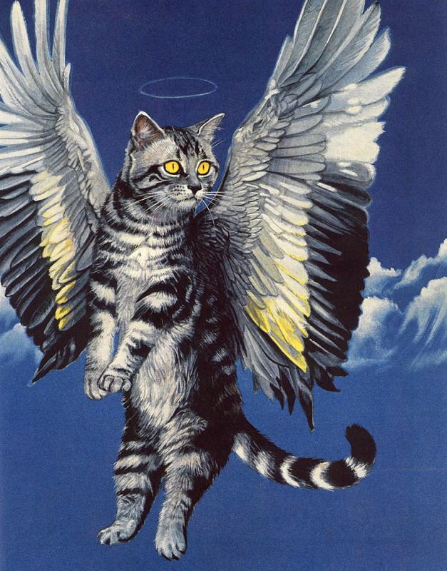 Валь и Рон Линдхан. Кот с крыльями