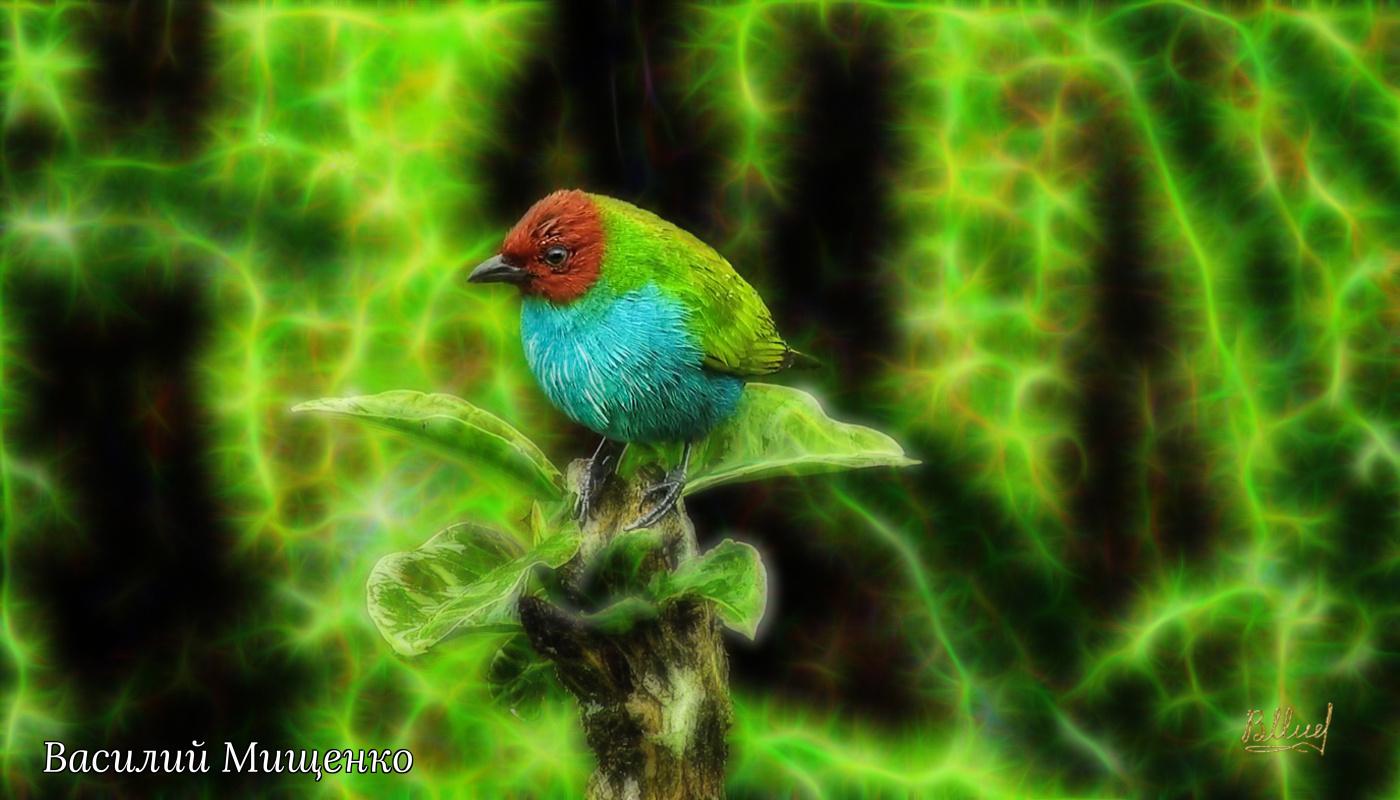 Vasiliy Mishchenko. Birds 029