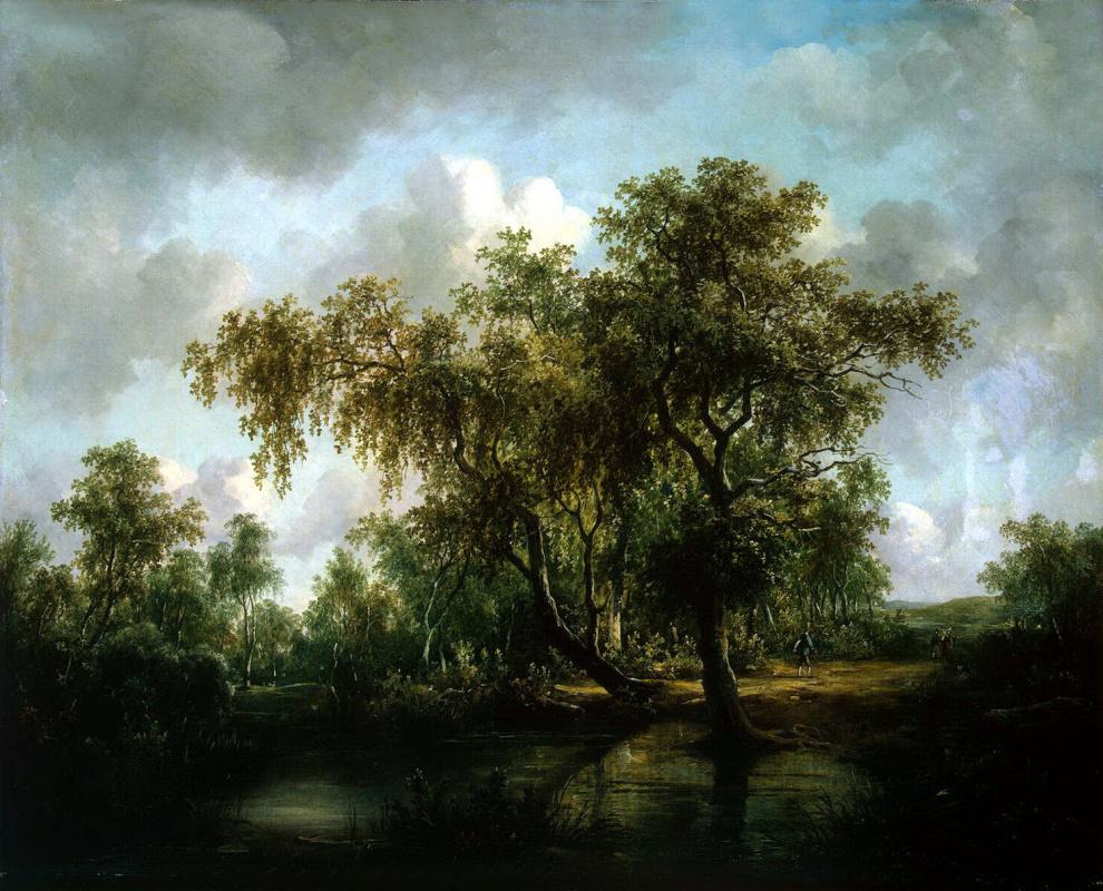 Патрик Несмит. Пейзаж с прудом