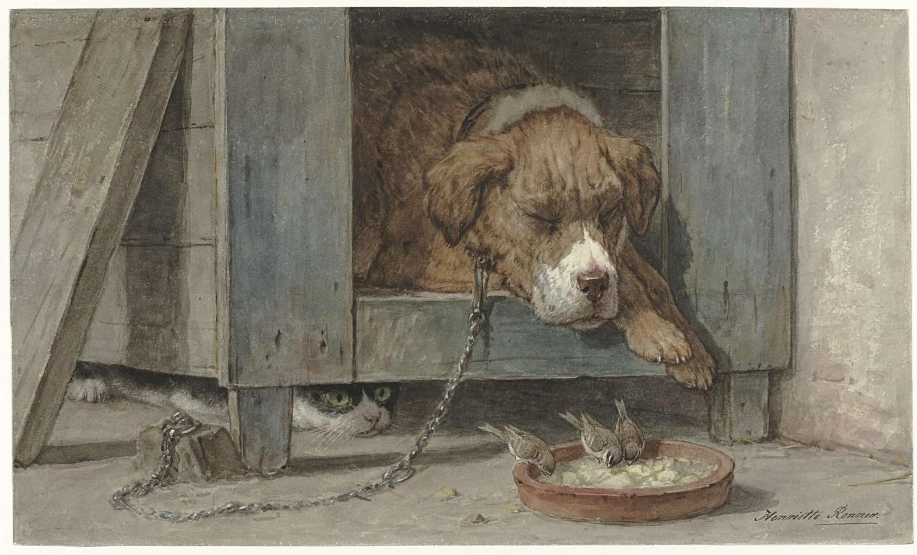 Генриетта Роннер-Книп. Кот наблюдает за птицами, которые едят из тарелки спящего пса