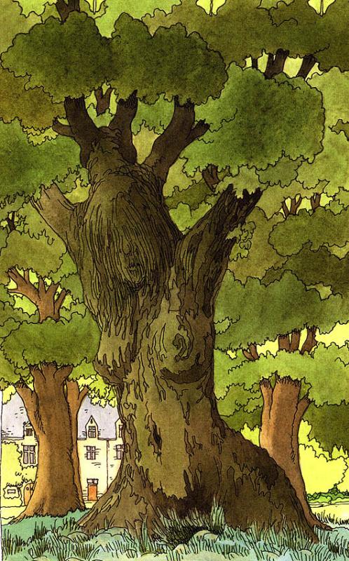 Клодин Сабатье. Старое дерево