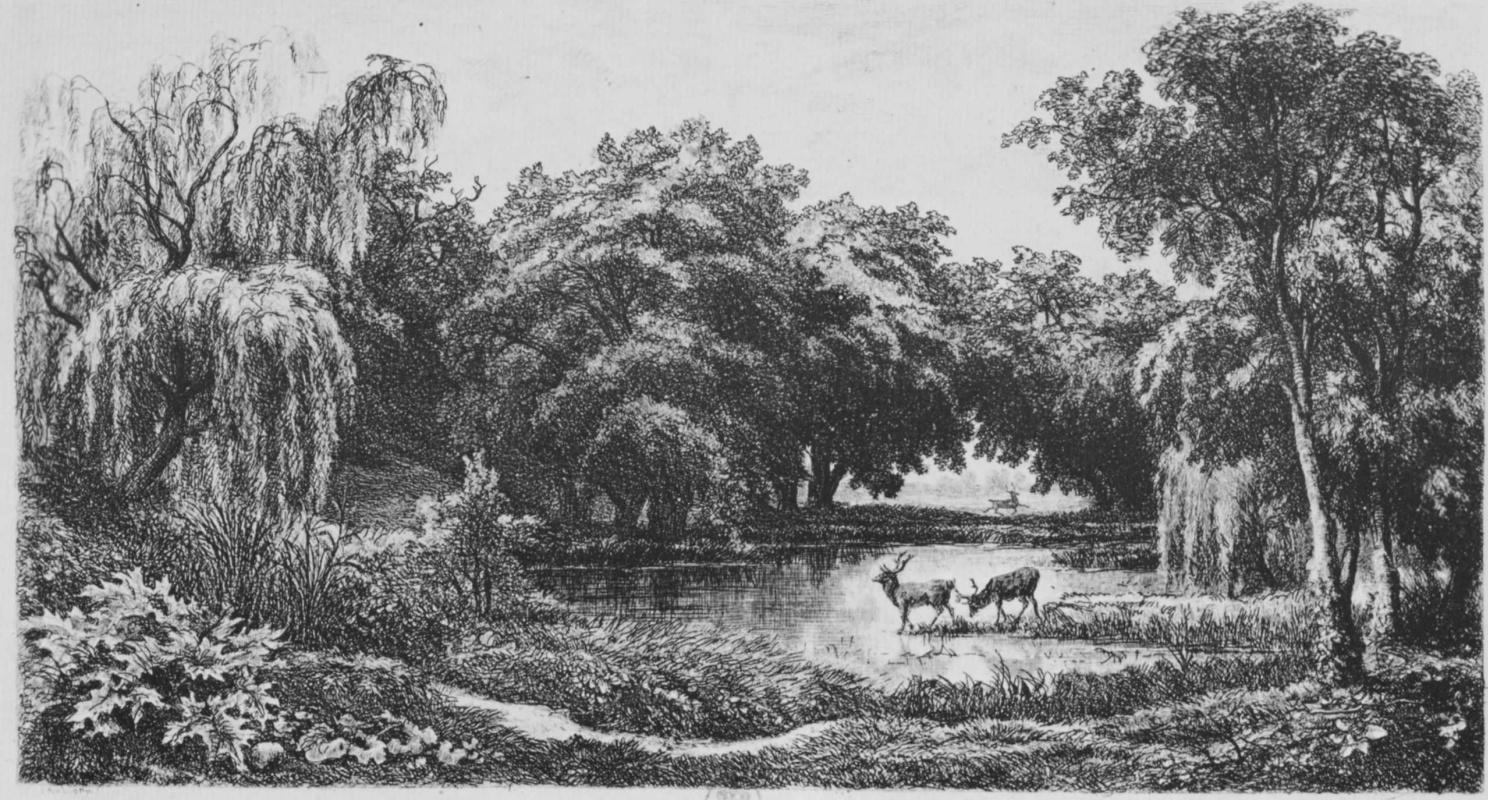 Шарль-Франсуа Добиньи. Олени в пруду