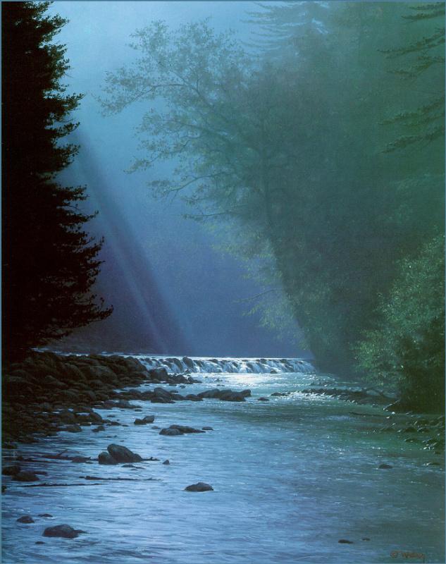 Марк Вебер. Река