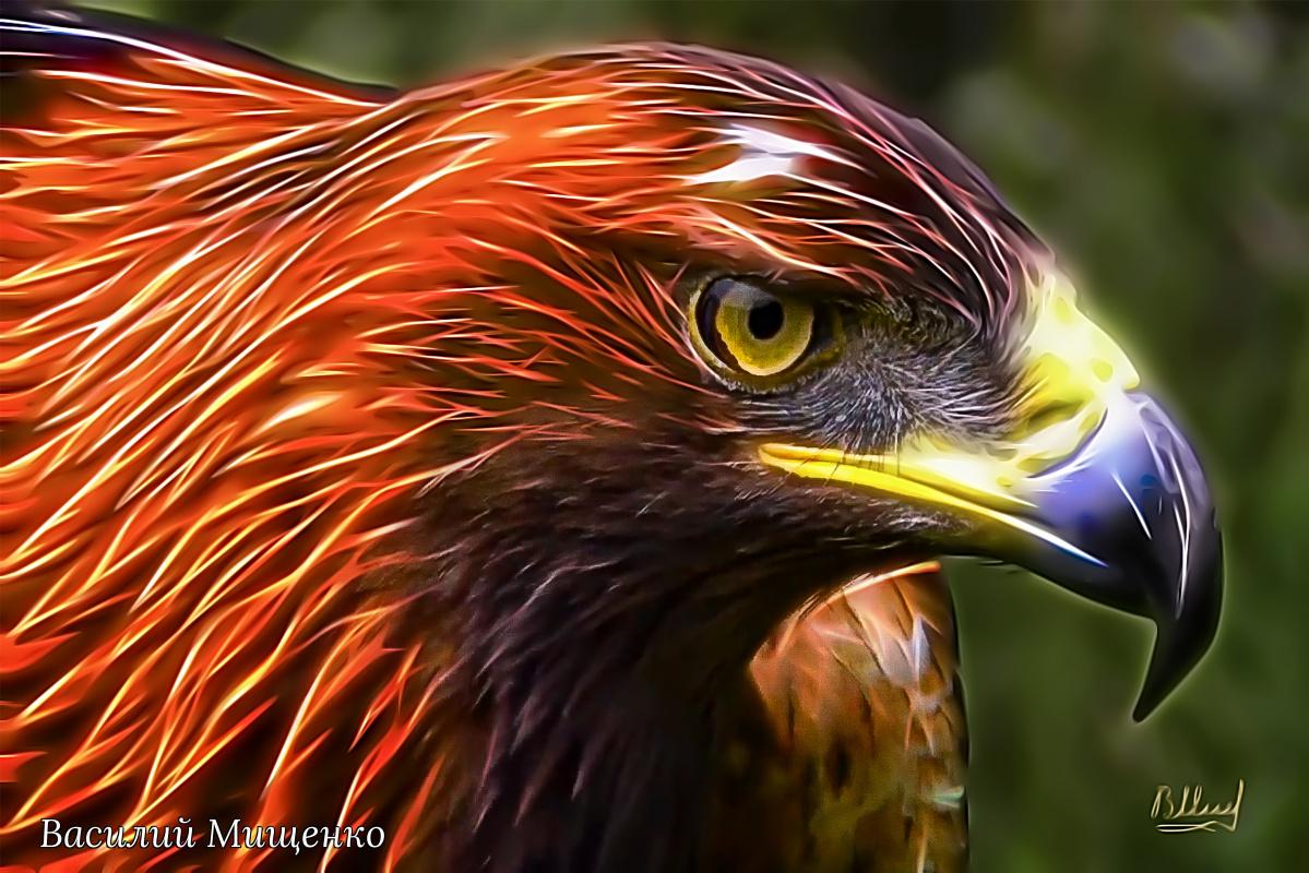 Vasiliy Mishchenko. Birds 025