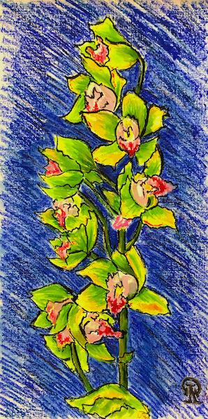 Larissa Lukaneva. Green orchid
