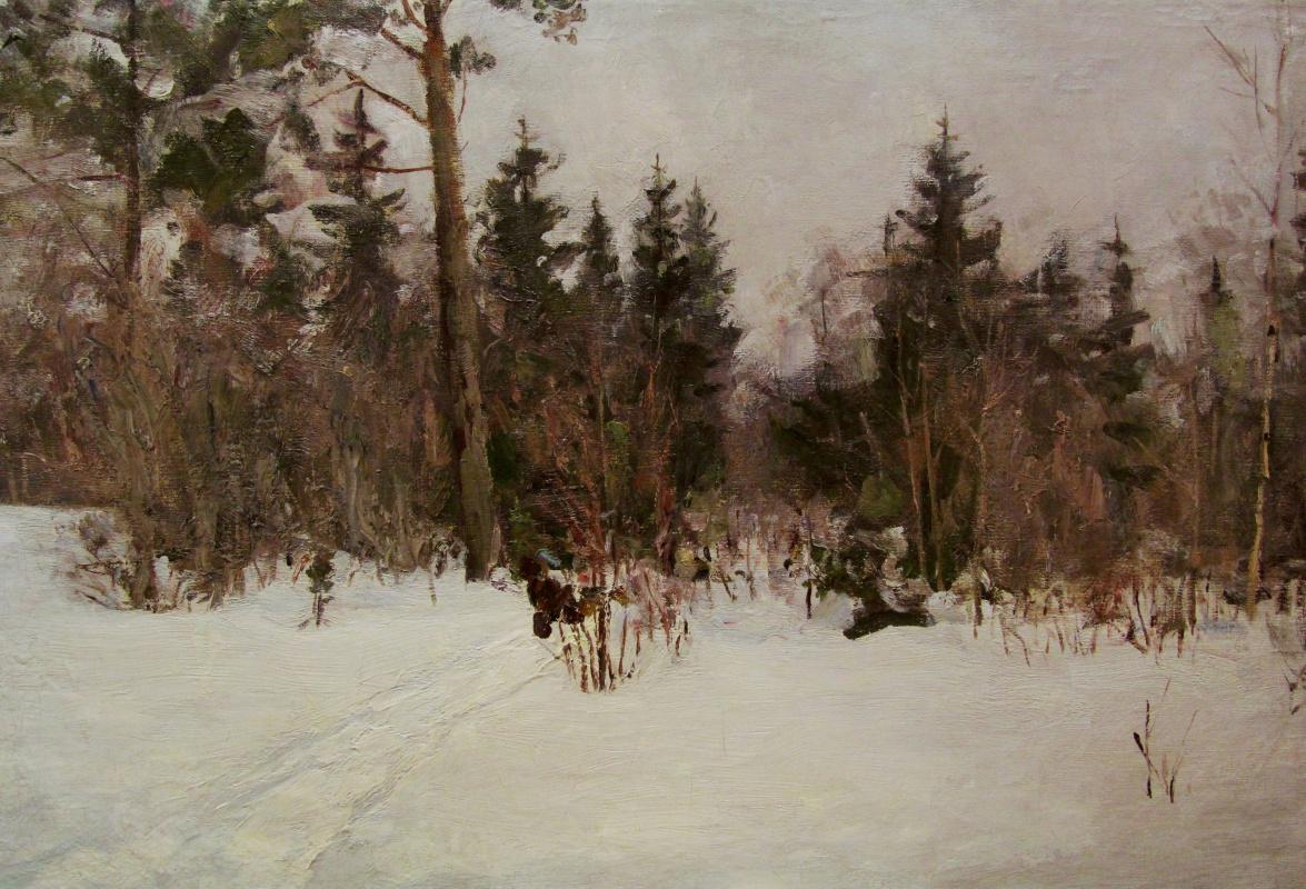 Vladimir Georgievich Gremitskykh. Winter day in the forest